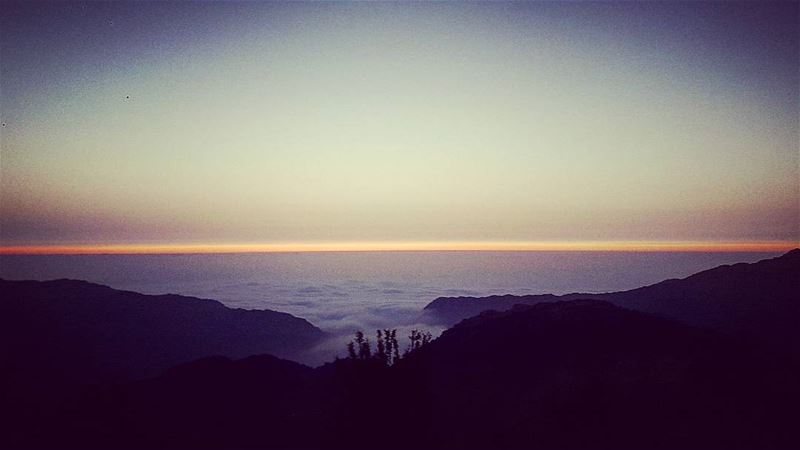 《Somewhere in between》#seaofclouds