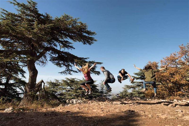 Happily Jumping (Barouk Cedar Forest)