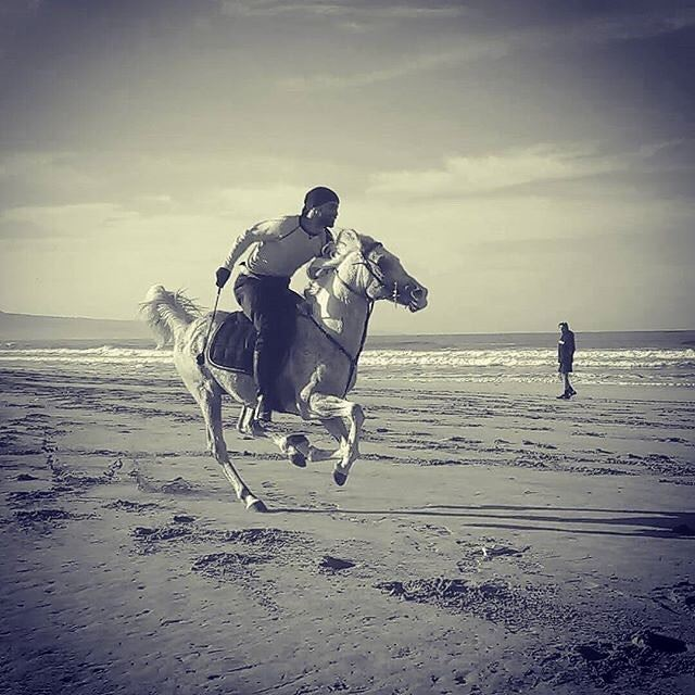 There is no secret so close as that between a rider and his horse. (Tyre-Beach)