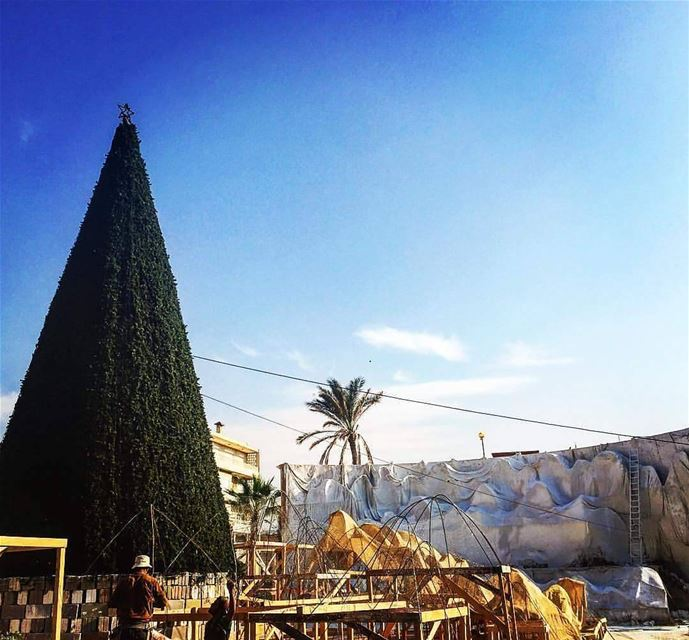 Stay tuned for the biggest Christmas grotto in Lebanon (Anfeh)