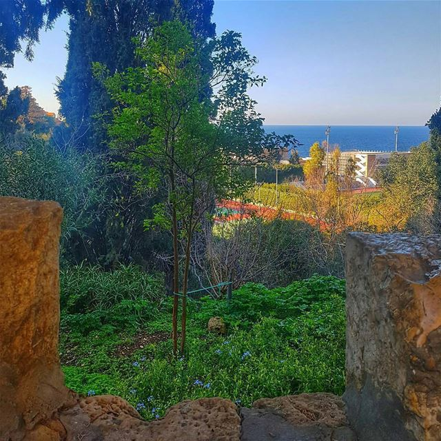 From @sarourah -   beirut  lebanon  instaphoto  livelovetheworld ...