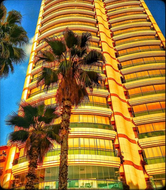 raouché  beirut  lebanon  city  building  palmtrees  glassandsteel ... (Raouché. Beyrouth)
