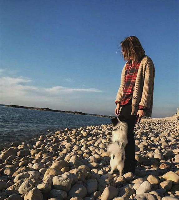 A walk along the shore with the catdog🐕 wintertime  warmday  sunset on...