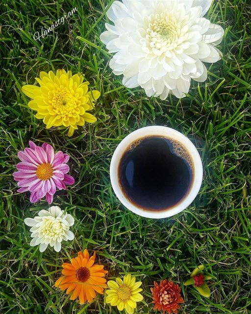 Bloom where god plants you..🌼 coffeeplease  coffee  cup  coffeetime ...