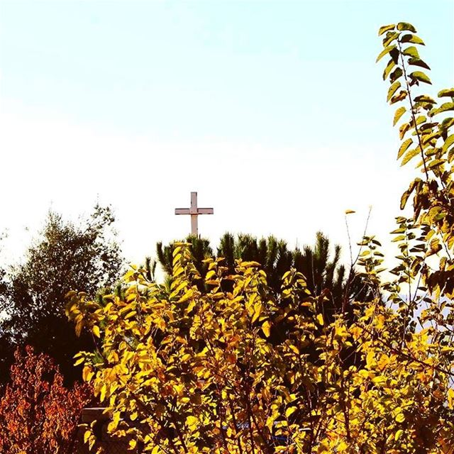 nature  autumn  trees  colors  leaves  Cross  Church  sky  cold ...