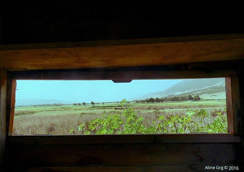 Window to Heaven 🍃🌾🌳 ammiq  friendstrip2  bekaa  officefriends ... (`Ammiq, Béqaa, Lebanon)