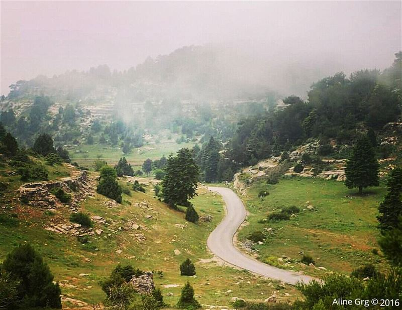 Road to Heaven.. ammou3a  hiking  adventure  fog  mountain  earth  planet... (Ammou3a - Akkar)