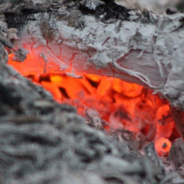 fire  wood  coal  ashes  burning  hot  red  white  gray  closeup  macro ...