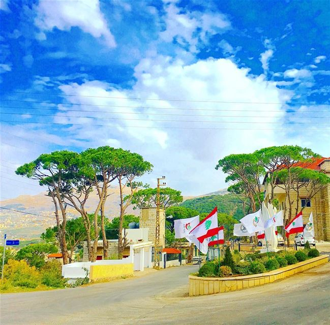 اسمُهُ عِزّهُ 🌲🇱🇧🌲🇱🇧  independance2016  celebrating  green  flag ... (قبّيع|Kobeih)