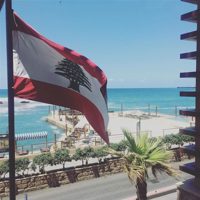 Proudly flying high. Happy Independence Day  lebanon  lebanontraveller ...