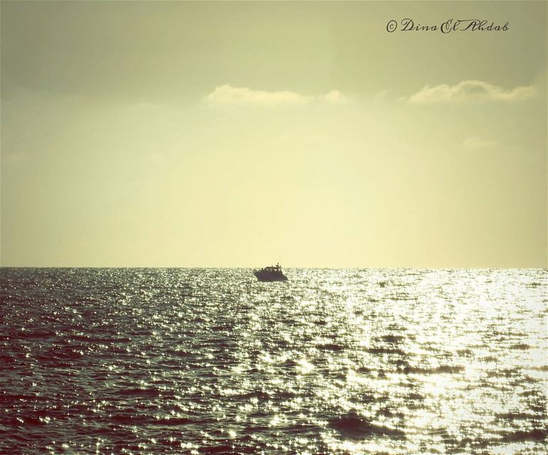 Lonely in the middle of nowhere !_________________ lonely  sea  seaview ... (Joünié)