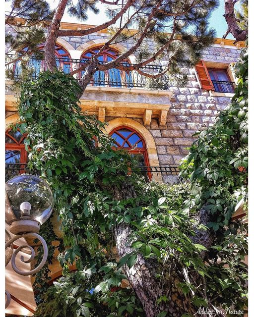 lebanesehouses  villas  lebaneseheritage  balconies  windows  archwindows... (Naas - Bekfaya)
