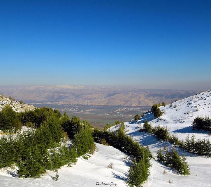 """The Best View comes after the Hardest Climb"" 💚 snowshoeing  barouk ... (Al Shouf Cedar Nature Reserve)"