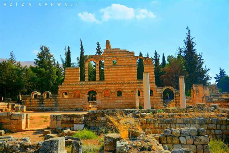 Anjar RuinsIt is well to think well; it is divine to act... (`Anjar, Béqaa, Lebanon)