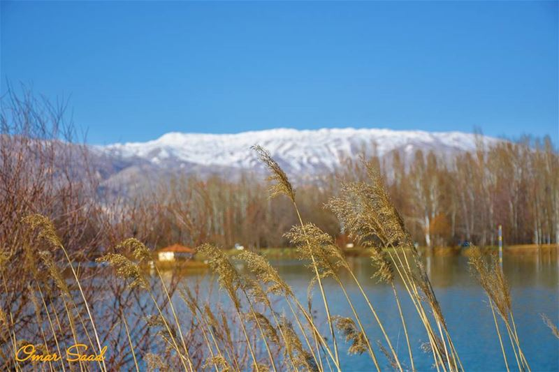 spring  lake  blue  sky  grass  snow  landscape  beautiful  weather ...