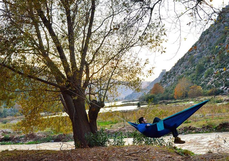 sunday autum winter river hammock tickettothemoon trees nature lagoone... (3youn el Samak)