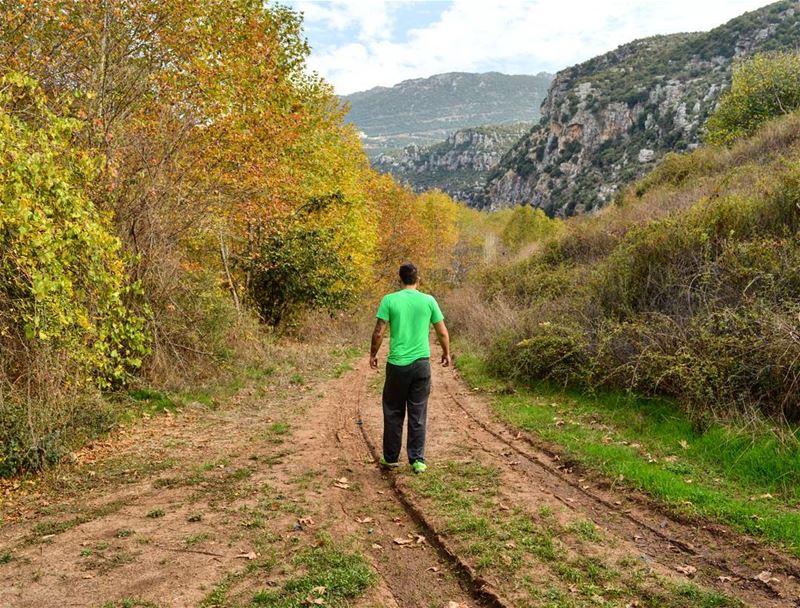 Keep walking 🍁 autumn winter walking hiking camping camp hike nature...