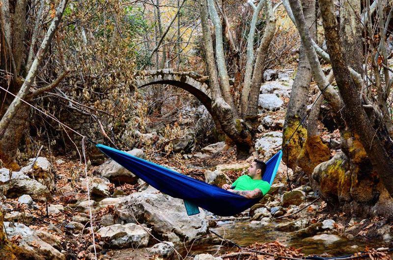 sunday hike hiking autumn river nature landscape forest nature hammock...