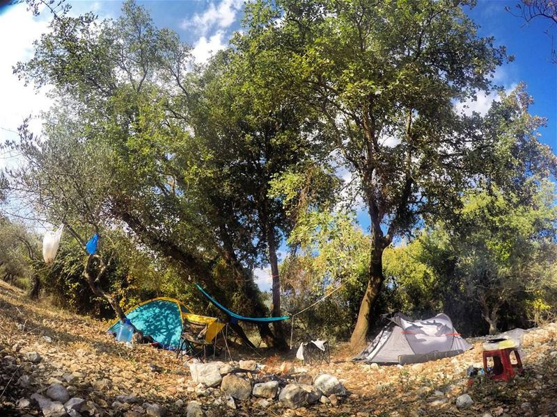 sunday morning autumn nature forest camp camping hike hiking bonefire... (Ain Kfaa)