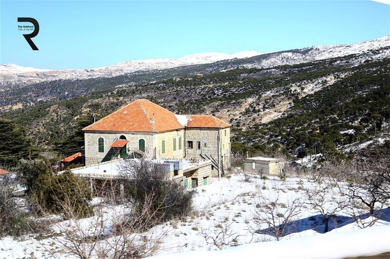 Happiness is Homemade 😍😍😍🏡🏡🏡✅ Lebanon 🇱🇧 Houses 🏡 lebanon ...