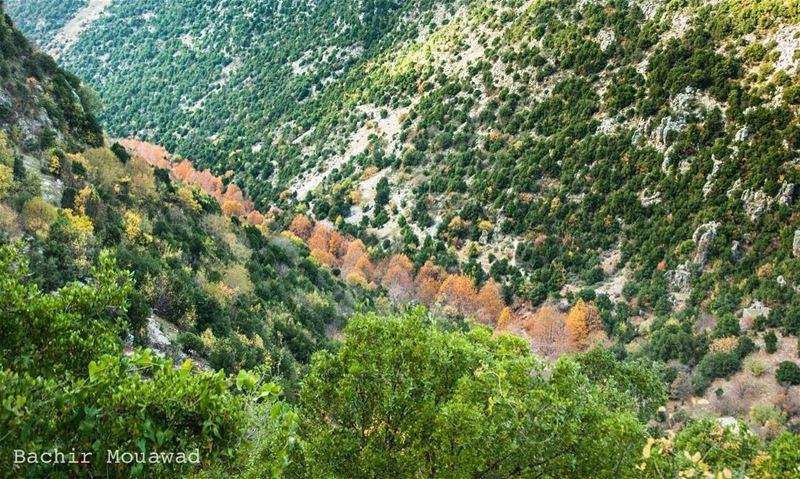 hiking valley river nikon nikonphotographer picoftheday kfardebian ...