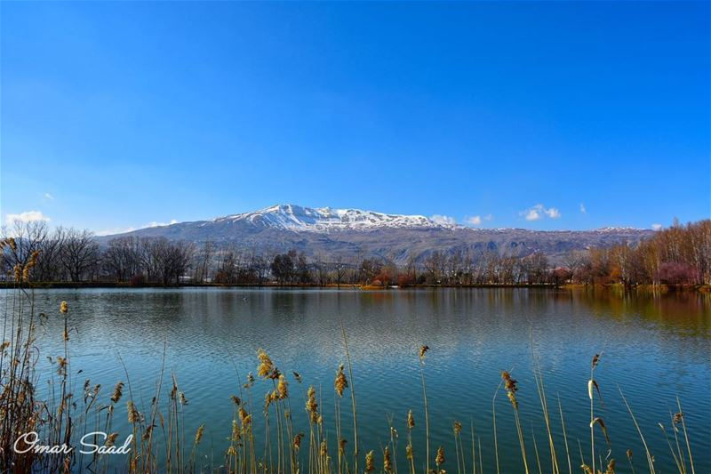 Amazing view and place taanayel beqaa lebanon lake reflection nature... (Taanayel Lake)