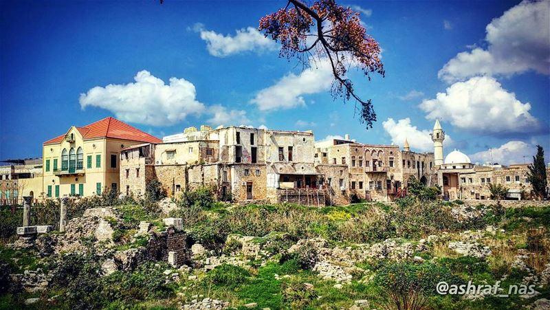 عندي سنونو وفي عندي قرميد...بعرف شو يعني إذا إنتَ بعيد...بس حبيبي... إحسا (Tyre, Lebanon)