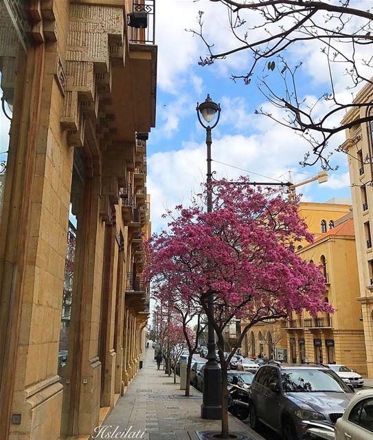 Beautiful week ahead 💞 lebanonweekly lebanontimes insta_lebanon ... (Downtown Beirut)