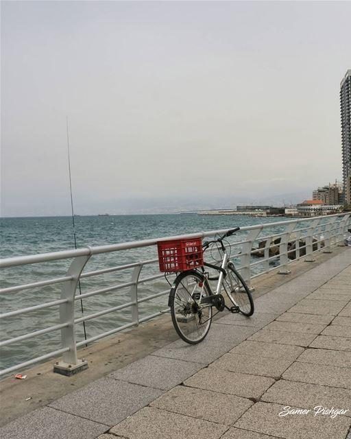🚲 - Beirut... Lebanon beirut sea Lebanese ihavethisthingwithbikes...