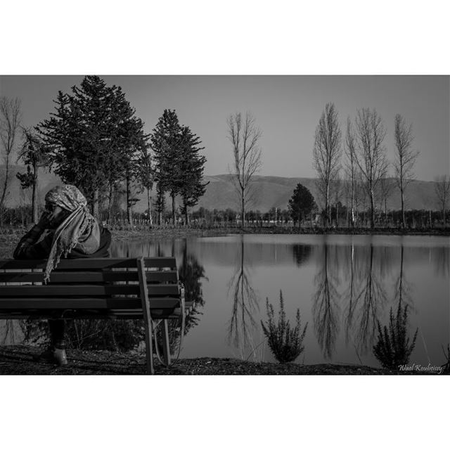 trees  girl  portrait  nature   lake  bench  hd_lebanon  ptk_lebanon ... (Taanayel Lake)