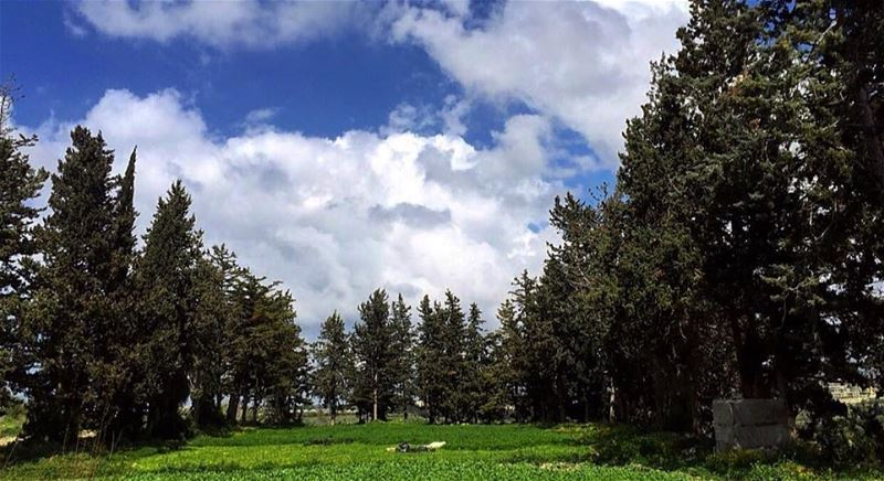 nature green trees sky clouds southlebanon lebanon insta_lebanon... (Khorbet L Dweir South Lebanon)