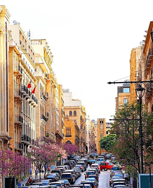 O Líbano dá as boas vindas à primavera 🇱🇧 Lebanon welcomes spring ... (Downtown Beirut)