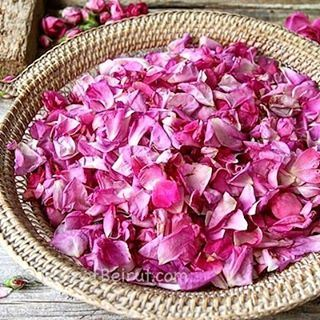 Waking-up and smelling fresh rose petals. These are used to make... (Dayr Al Qamar, Mont-Liban, Lebanon)