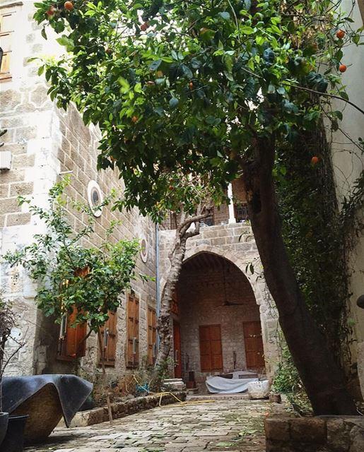 tyre sour old lebanese house lebanon insta_lebanon lebanonhouses... (Tyre, Lebanon)