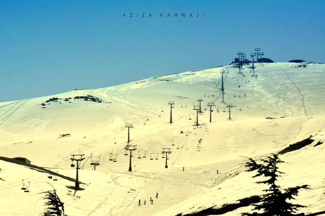 ZaarourKindness is like snow—It beautifies everything it... (Zaarour)