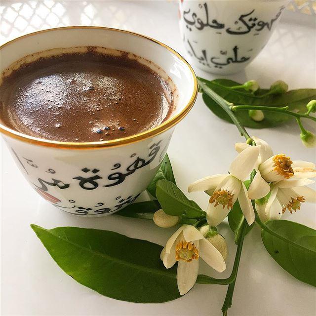وان بدأ صباحي بك اكتفيت عن باقي اليوم . قهوتي قهوة_الصباح فنجان قهوة ...