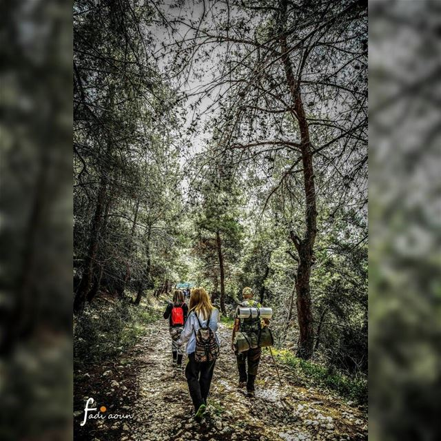 photo fadiaounphotography hiking nature lebanon forest ...