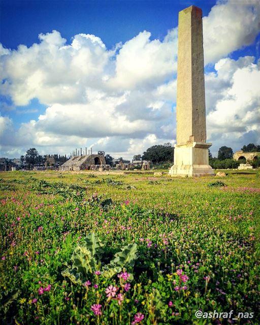نطرتك أنا... ندهتك أنارسمتك على المشاوير...يا هم العمر... يا دمع الزهريا (Roman ruins in Tyre)