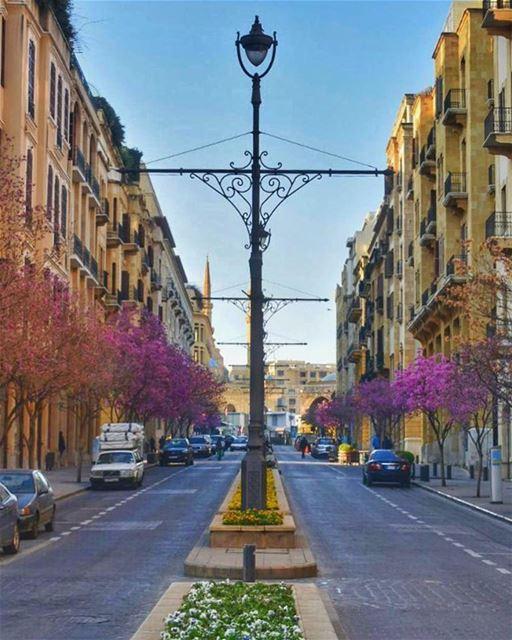 Urban BL🌸SS🌸MS 💙🌸💙________________________________________... (Beirut, Lebanon)