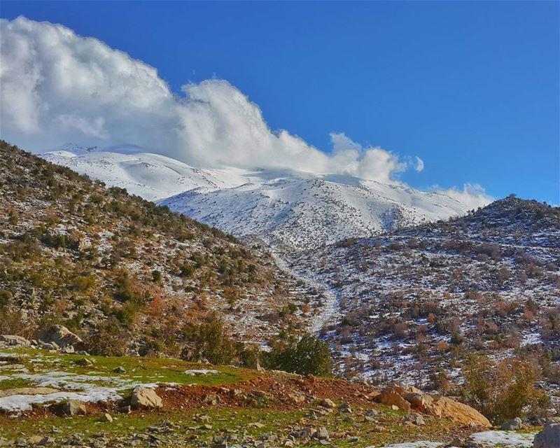 ما بين شتاءٍ،، و ربيع 👌... حاصبيا جبل_الشيخ 📷 snow nature_perfection...