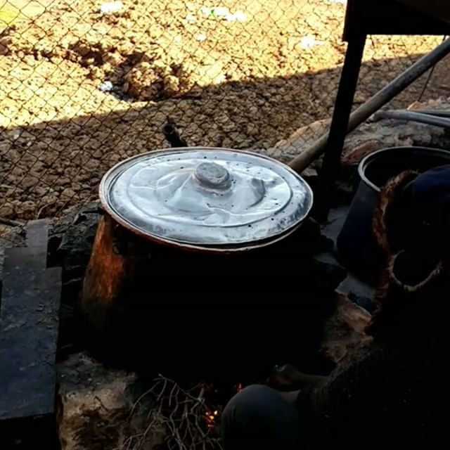 Making yogurt! Laban in Lebanese. Lebanon or libnan has the root word of... (Bekaa Valley)