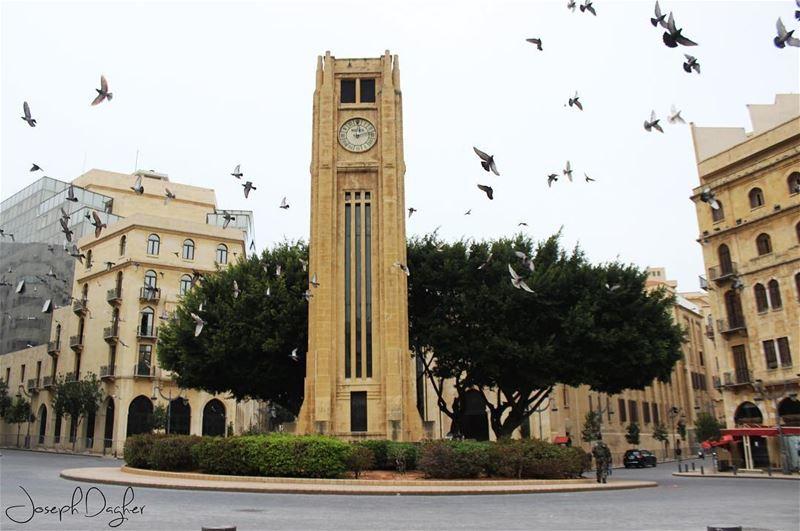Beirut 💛_______________________________________________________... (Al Nejmeh Square)