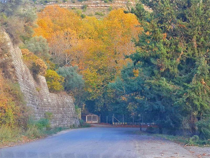 تذكر المسافة التي قطعتها،، وليس فقط المسافة المتبقية لديك 👌👌📷 🍃 🌳 جزي (Bâter, Mont-Liban, Lebanon)