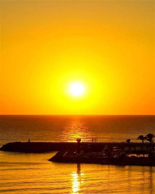 A golden classic🌅------------------------------------Hope ur all having...