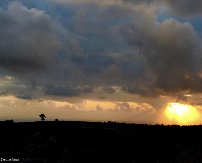 sunset sky clouds tree colors landscape ...