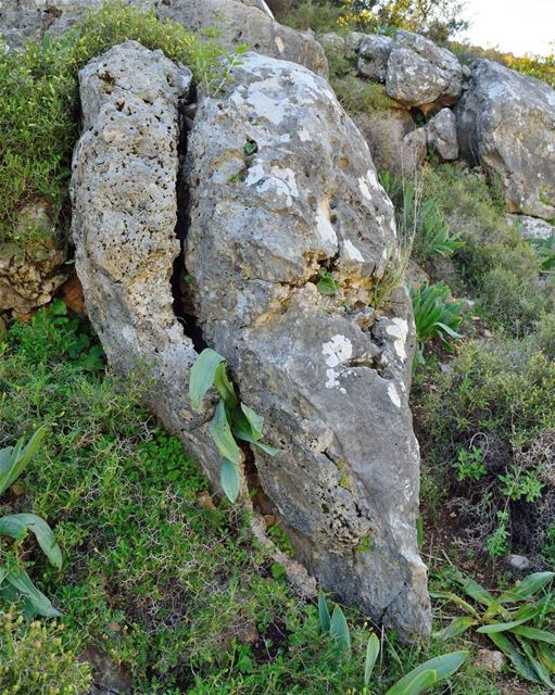 أسعدتم مساءا ☺ nature rock lebanonature lebanon southlebanon ...