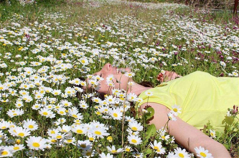 springtime lebanontimes flowerseverywhere lovelyplace natureaddict ... (Azour - Jezzine)