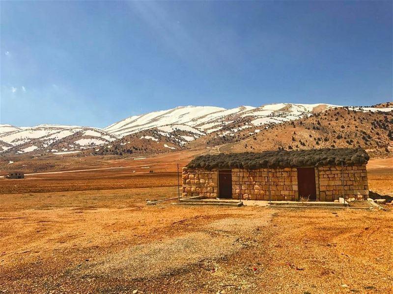 Marjheen by @hassantabikh hermel lebanon spring our treasure bekaa... (El Hermel, Béqaa, Lebanon)