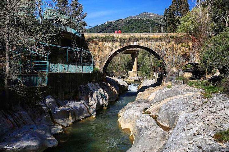 🌿 a7labaladbil3alam photo love photography me picoftheday ... (Jisr Al Qadi, Mont-Liban, Lebanon)