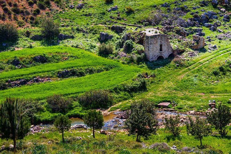 If there is something for you to do, Do it now and right away, Never put... (Arabsalim, Lebanon)